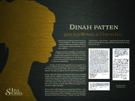 dinah-new-panel