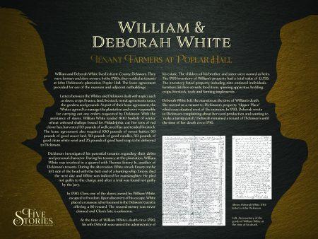 white-panel