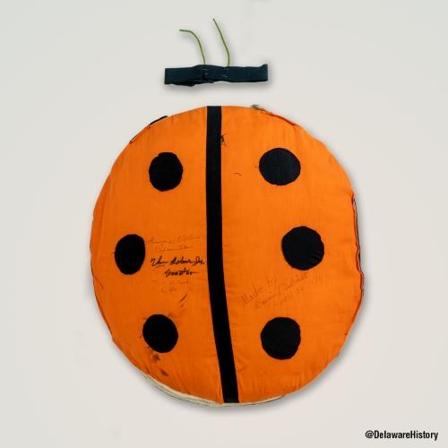 Photo of the ladybug costume